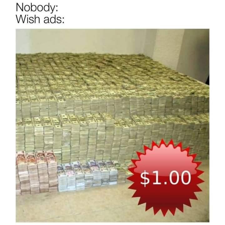 meme - Product - Nobody: Wish ads: $1.00