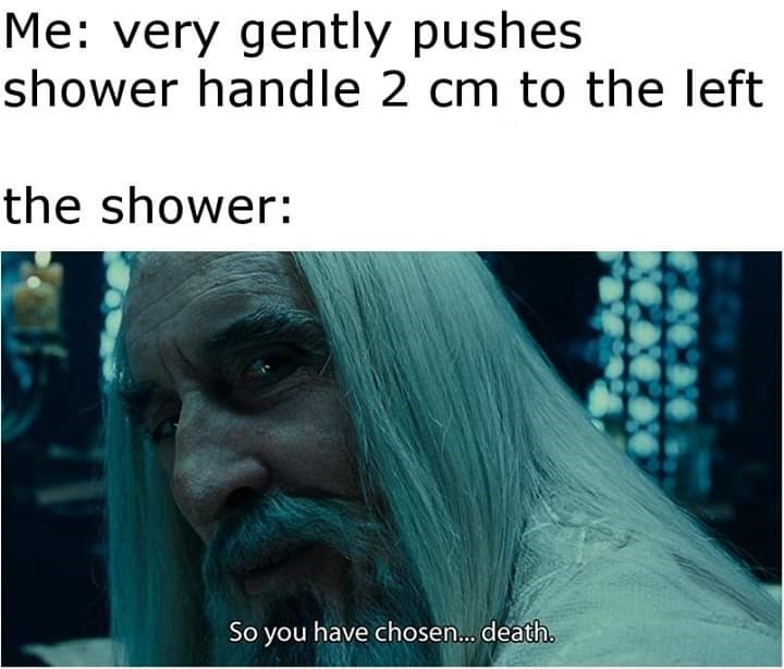 meme - Text - Me: very gently pushes shower handle 2 cm to the left the shower: So you have chosen... death