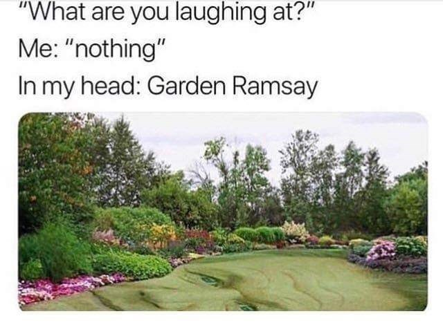 "meme - Natural landscape - ""What are you laughing at?"" Me: ""nothing"" In my head: Garden Ramsay"