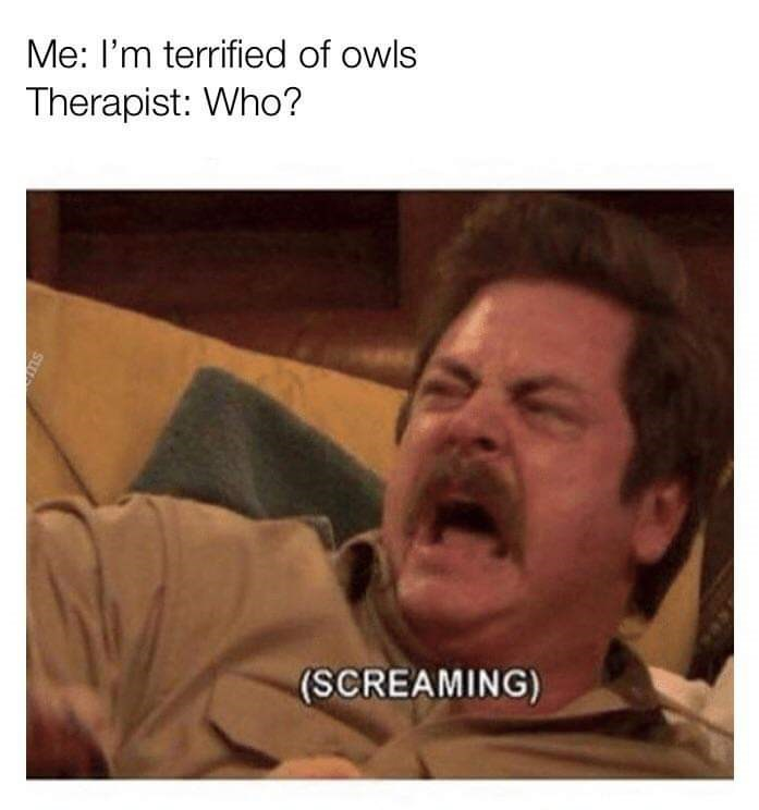 meme - Facial expression - Me: I'm terrified of owls Therapist: Who? (SCREAMING)