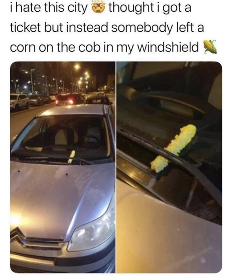 Vehicle - ihate this city thought i got a ticket but instead somebody left a corn on the cob in my windshield