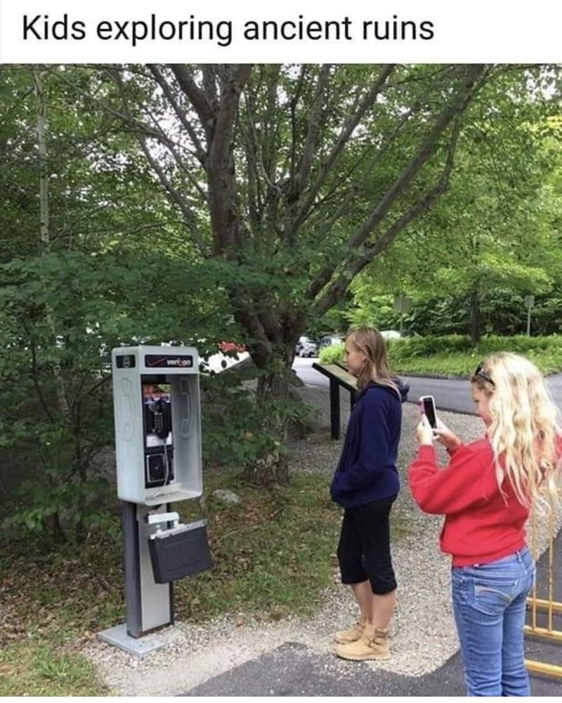 Tree - Kids exploring ancient ruins vern