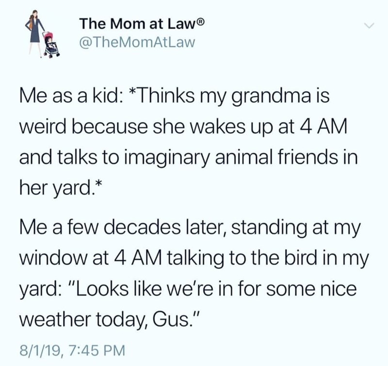 """Text - The Mom at Law @TheMomAtLaw Me as a kid: *Thinks my grandma is weird because she wakes up at 4 AM and talks to imaginary animal friends in her yard.* Me a few decades later, standing at my window at 4 AM talking to the bird in my yard: """"Looks like we're in for some nice weather today, Gus."""" 8/1/19, 7:45 PM"""