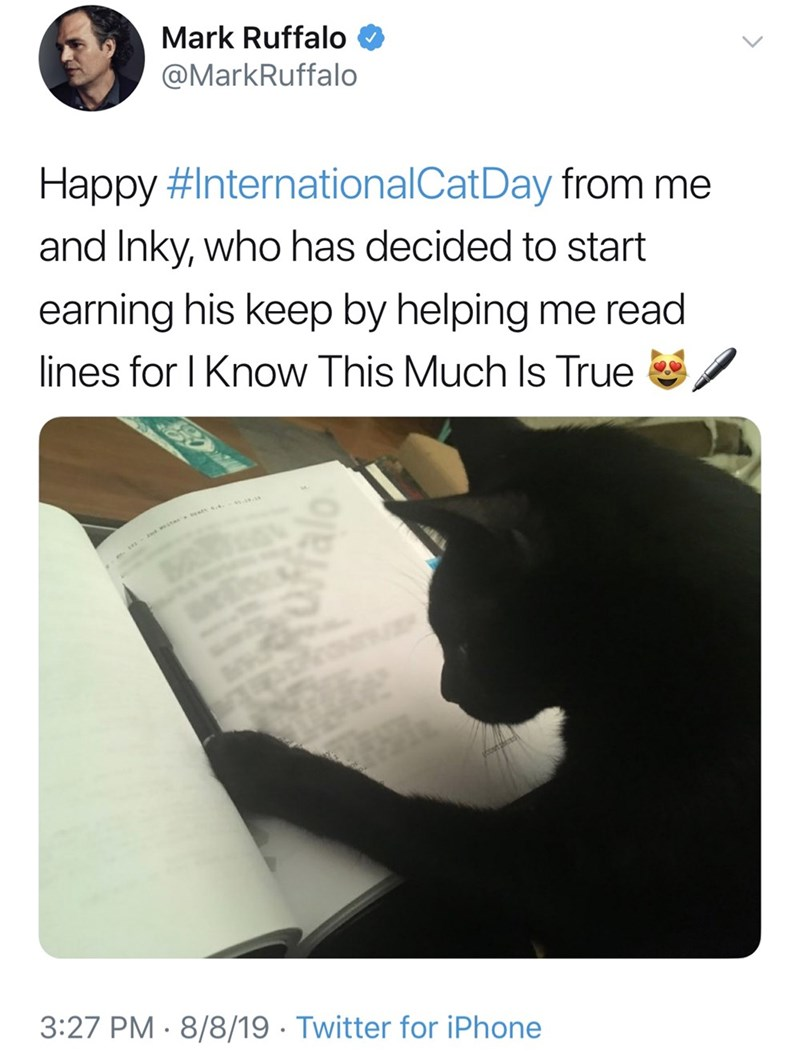 Text - Mark Ruffalo @MarkRuffalo Happy #InternationalCat Day from me and Inky, who has decided to start earning his keep by helping me read lines for I Know This Much Is True w wa - 3:27 PM 8/8/19 Twitter for iPhone