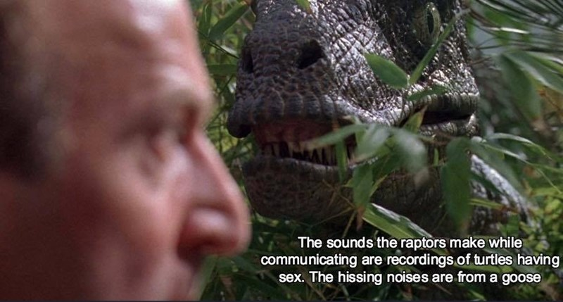 Jungle - The sounds the raptors make while communicating are recordings.of turtles having sex. The hissing noises are from a goose
