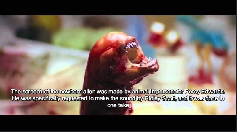 sound effects - Nose - The screech of the newborn alien was made by animal impersonator Percy Edwards. He was specifically requested to make the sound by Ridley Scott, and it was done in one take