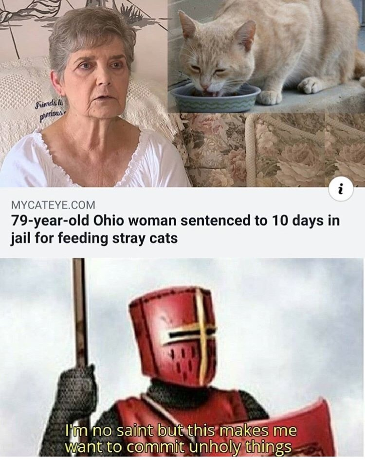 Photo caption - Friends pirrious MYCATEYE.COM 79-year-old Ohio woman sentenced to 10 days in jail for feeding stray cats Tm no saint but this makes me Want to commit unholy things