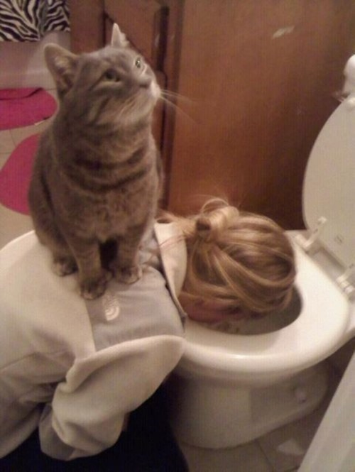 woman leaning into toilet vomiting with cat sitting on her back