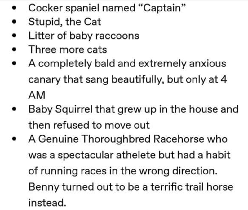 "grandpa's animals - Text - Cocker spaniel named ""Captain"" Stupid, the Cat Litter of baby raccoons Three more cats A completely bald and extremely anxious canary that sang beautifully, but only at 4 AM Baby Squirrel that grew up in the house and then refused to move out A Genuine Thoroughbred Racehorse who was a spectacular athelete but had a habit of running races in the wrong direction. Benny turned out to be a terrific trail horse instead"