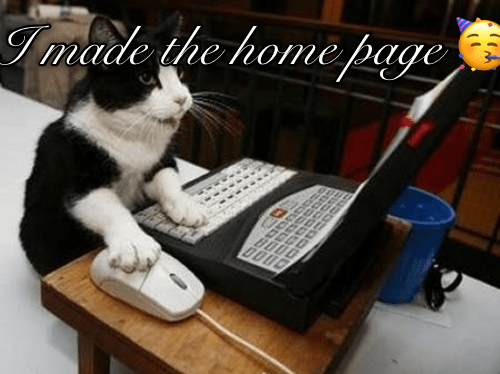 black and white cat using a computer and a mouse