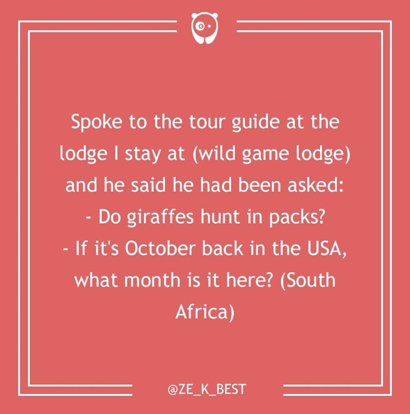dumb customer - Text - Spoke to the tour guide at the lodge I stay at (wild game lodge) and he said he had been asked: Do giraffes hunt in packs? If it's October back in the USA, what month is it here? (South Africa) @ZE_K_BEST
