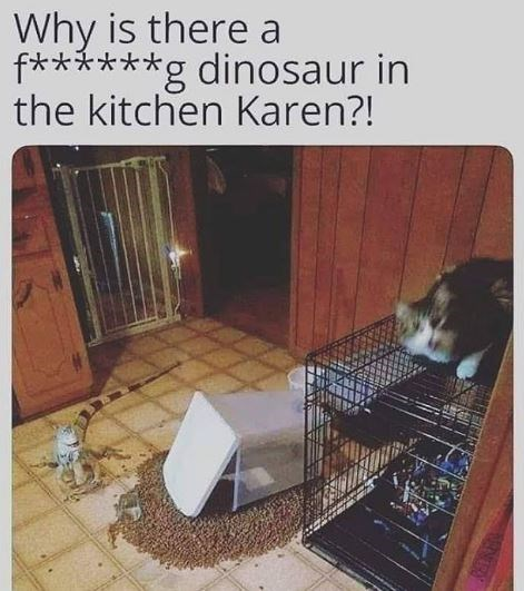 Cat - Why is there a f******g dinosaur in the kitchen Karen?!