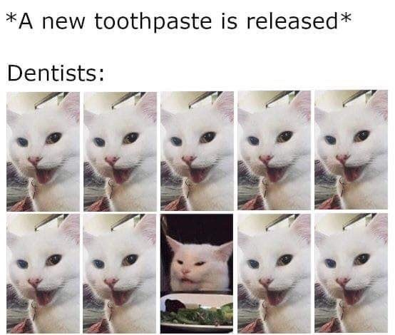 dentist Memes toothpaste Cats funny - 9344495360
