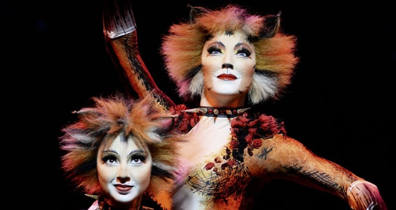 two female cats actors in cat makeup and costumes posing against black background