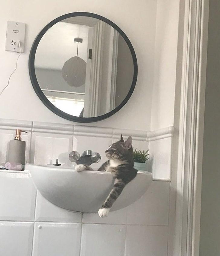 Bathroom - www.