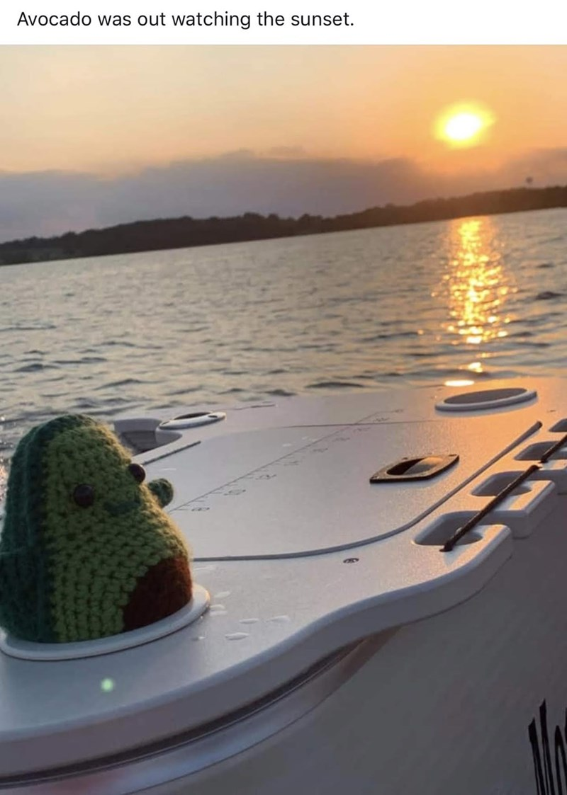 meme - Sky - Avocado was out watching the sunset.