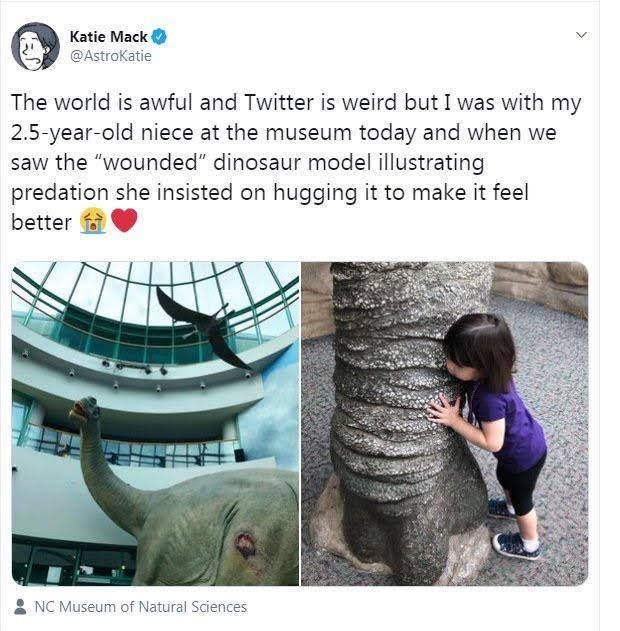 """meme - Elephant - Katie Mack @AstroKatie The world is awful and Twitter is weird but I was with my 2.5-year-old niece at the museum today and when we saw the """"wounded"""" dinosaur model illustrating predation she insisted on hugging it to make it feel better NC Museum of Natural Sciences"""
