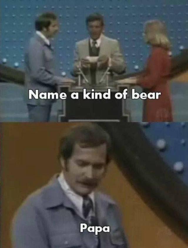 Photo caption - Name a kind of bear Papa