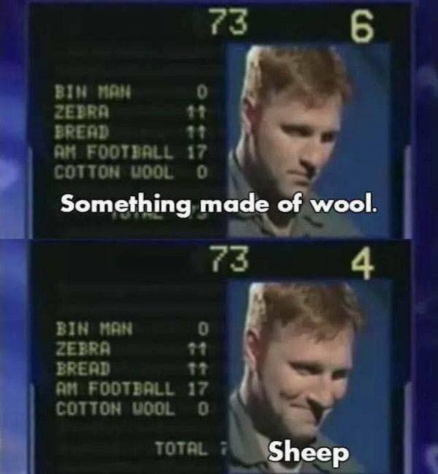 News - 73 6 BIN MAN ZEBRA BREAD AM FOOTBALL 17 COTTON WOOL O 11 11 Something made of wool. 73 4 BIN MAN ZEBRA BREAD AM FOOTBALL 17 COTTON UOOL O 11 Sheep TOTAL