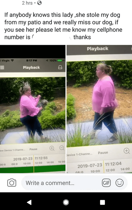 trashy behavior - Website - 2 hrs . If anybody knows this lady,she stole my dog from my patio and we really miss our dog, if you see her please let me know my cellphone number is thanks Playback I Virgin 8:17 PM 100% Playback tew Device 1-Channe. Pause Pause evice 1-Channe... 2019-07-23 11:12:55 16:00 12:00 14:00 06:0 08:0 10:00 2019-07-23 11:12:04 14:00 12:00 10:00 8:0 Write a comment... GIF