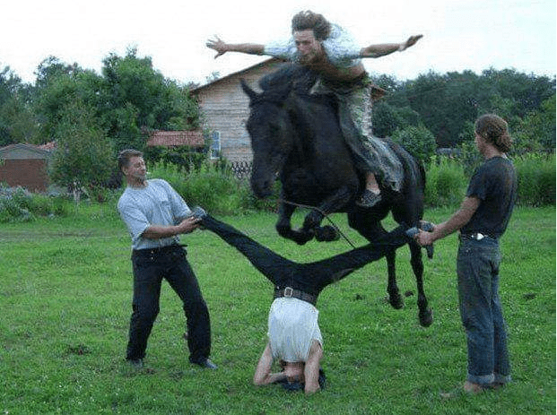 cursed images - Horse
