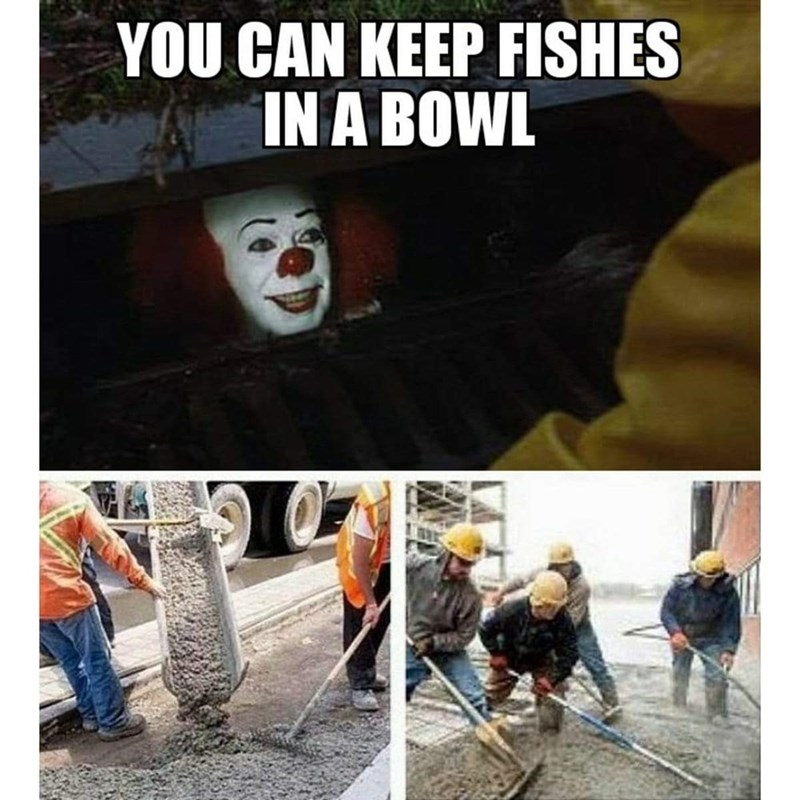 Nose - YOU CAN KEEP FISHES IN A BOWL