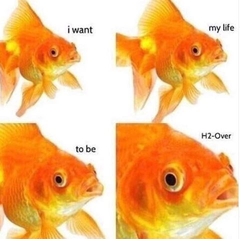 Fish - i want my life H2-Over to be