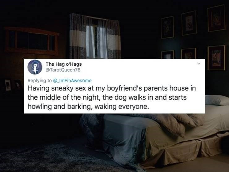Text - The Hag o'Hags @TarotQueen76 Replying to @ ImFinAwesome Having sneaky sex at my boyfriend's parents house in the middle of the night, the dog walks in and starts howling and barking, waking everyone.