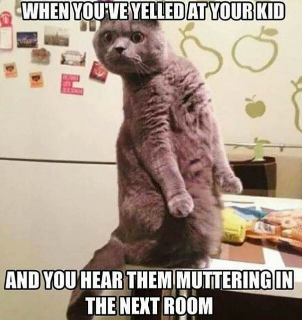 Internet meme - WHEN YOUVEYELLEDAT YOUR KID AND YOU HEAR THEM MUTTERING IN THE NEXT ROOM