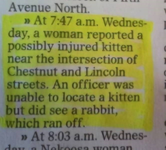Text - Avenue North. At 7:47 a.m. Wednes- day, a woman reported a possibly injured kitten near the intersection of Chestnut and Lincoln streets. An officer was unable to locate a kitten but did see a rabbit, which ran off. »At 8:03 a.m. Wednes- dou >> Nokoosa