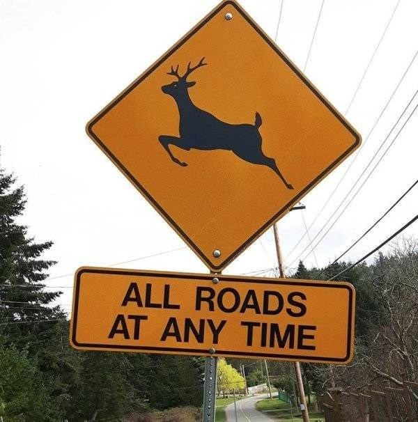 Sign - ALL ROADS AT ANY TIME