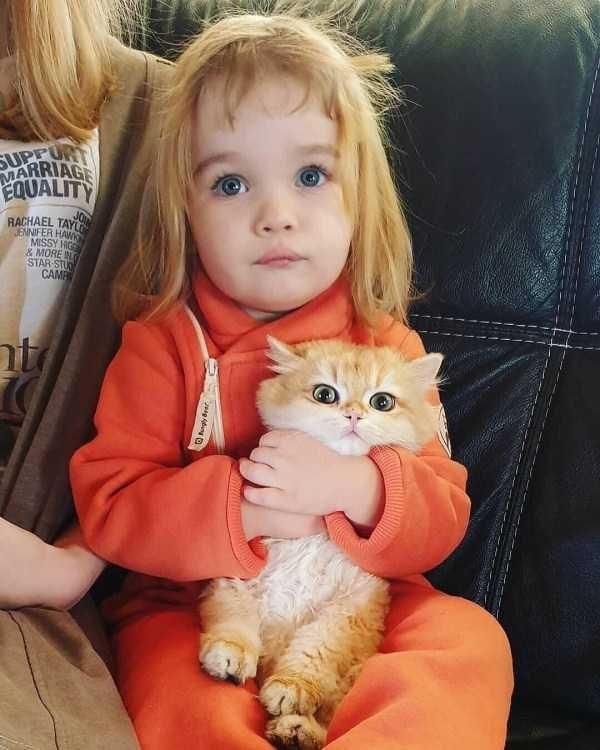 amazing animal photo - Cat - SUPEURT MARRIAGE EQUALITY RACHAEL TAN ENNIFER HAW MISSY HIG &MORE N STAR STU CAMB nt