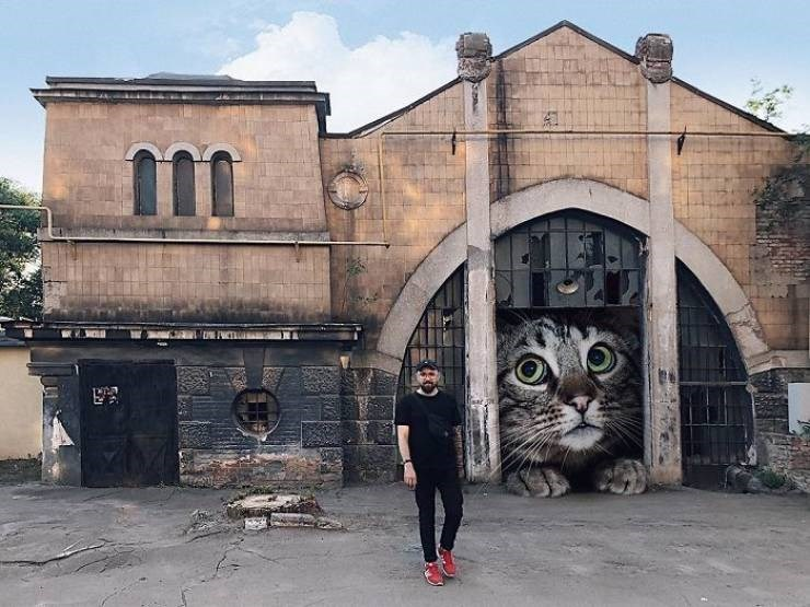 giant cat photoshops - Town