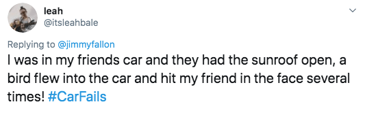 twitter - Text - leah @itsleahbale Replying to @jimmyfallon I was in my friends car and they had the sunroof open, a bird flew into the car and hit my friend in the face several times! #CarFails