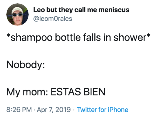 Text - Leo but they call me meniscus @leomOrales *shampoo bottle falls in shower* Nobody: My mom: ESTAS BIEN 8:26 PM Apr 7, 2019 Twitter for iPhone