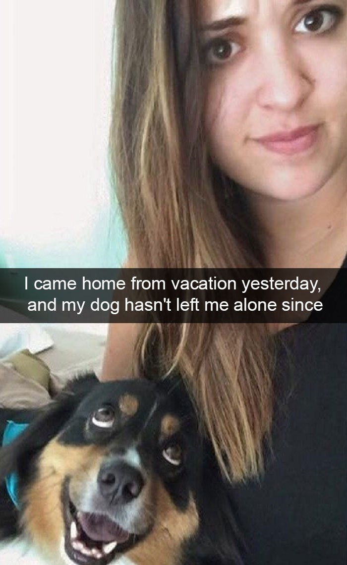 Hair - I came home from vacation yesterday, and my dog hasn't left me alone since