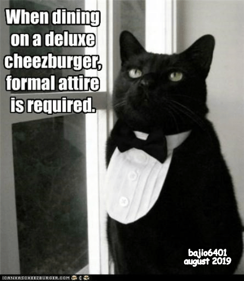Cheezburger Image 9345453312