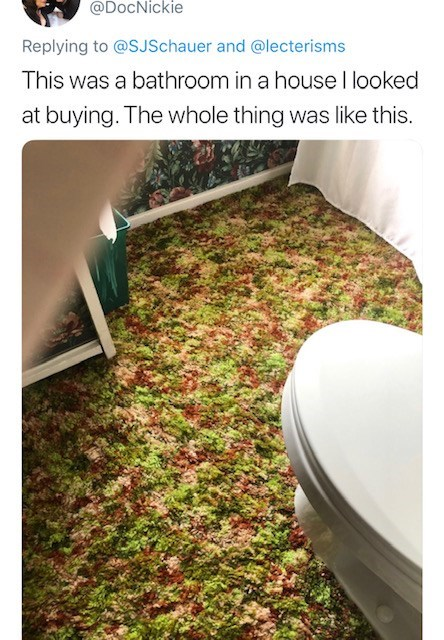 Grass - @DocNickie Replying to @SJSchauer and @lecterisms This was a bathroom in a house l looked at buying. The whole thing was like this.