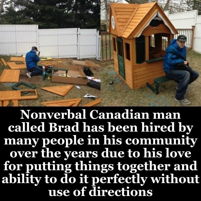 Shed - Nonverbal Canadian man called Brad has been hired by many people in his community over the years due to his love for putting things together and ability to do it perfectly without use of directions