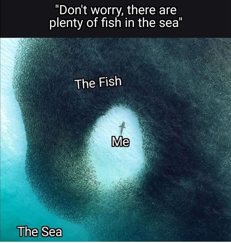 "Text - ""Don't worry, there are plenty of fish in the sea"" The Fish Me The Sea"