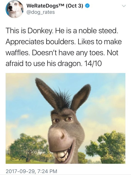 Burro - WeRateDogs (Oct 3) @dog_rates This is Donkey. He is a noble steed. Appreciates boulders. Likes to make waffles. Doesn't have any toes. Not afraid to use his dragon. 14/10 2017-09-29, 7:24 PM