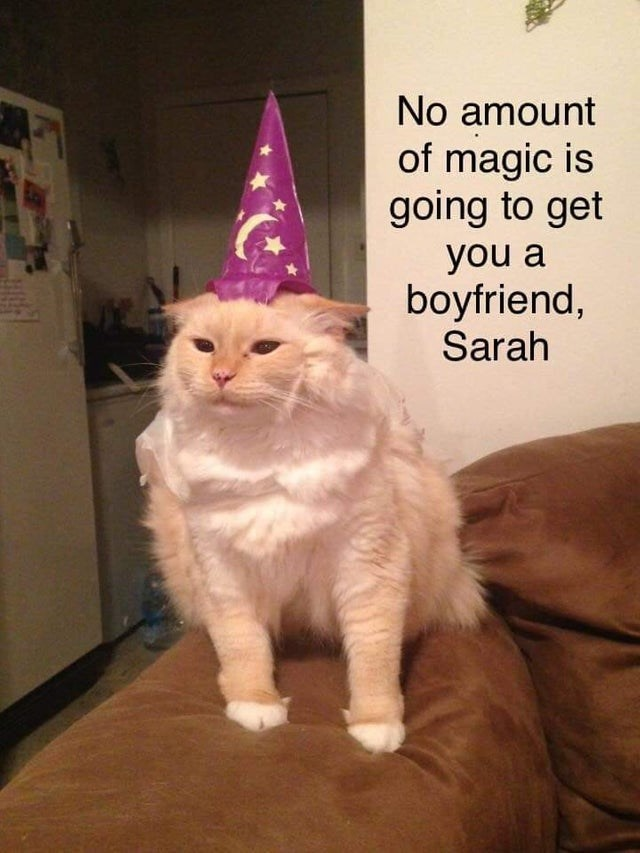 Cat - No amount of magic is going to get you a boyfriend, Sarah