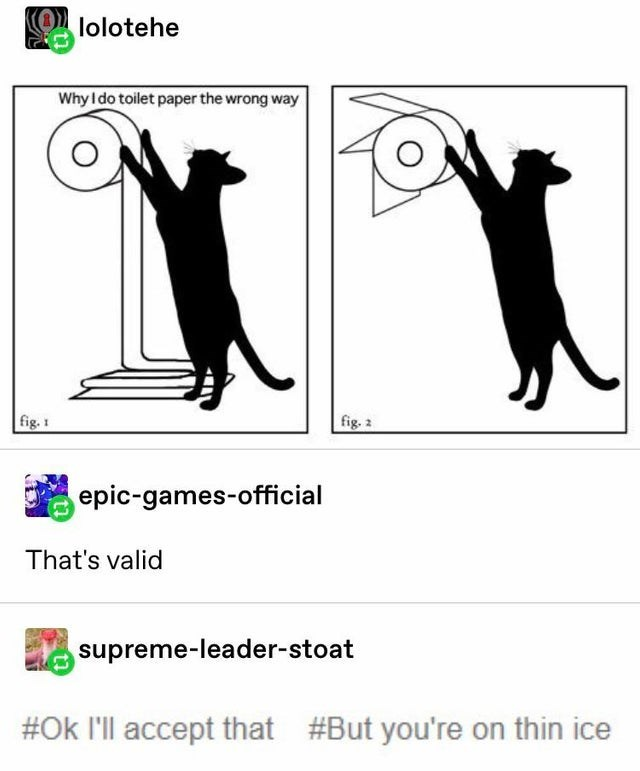 Text - lolotehe Why Ido toilet paper the wrong way fig.2 fig.1 epic-games-official That's valid upreme-leader-stoat #Ok I'll accept that #But you're on thin ice