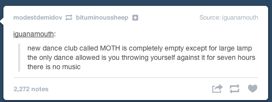 Text - modestdemidov bituminoussheep Source: iguanamouth iquanamouth: new dance club called MOTH is completely empty except for large lamp the only dance allowed is you throwing yourself against it for seven hours there is no music 2,272 notes