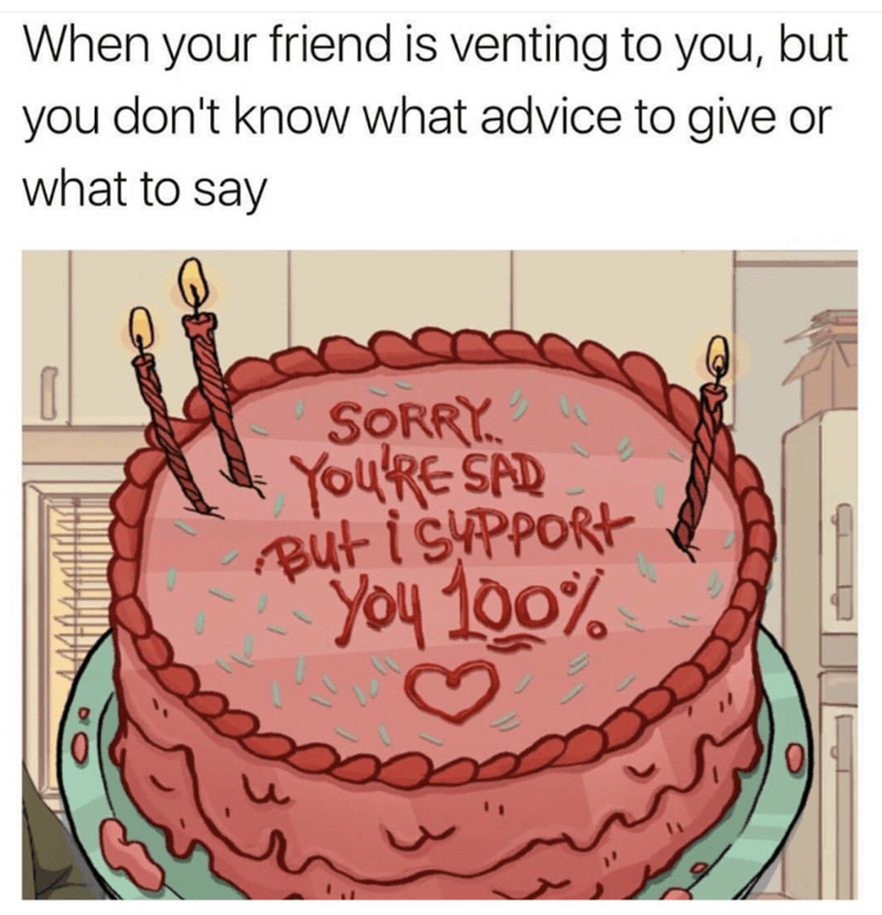 Cake - When your friend is venting to you, but you don't know what advice to give or what to say SORRY You'RE SAD Aut isppORt You 100%