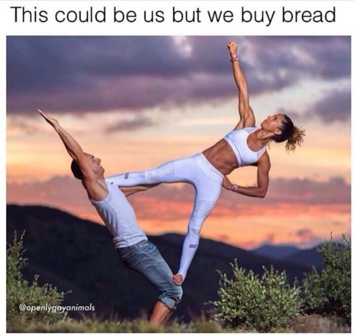Physical fitness - This could be us but we buy bread Gopenlygayanimals