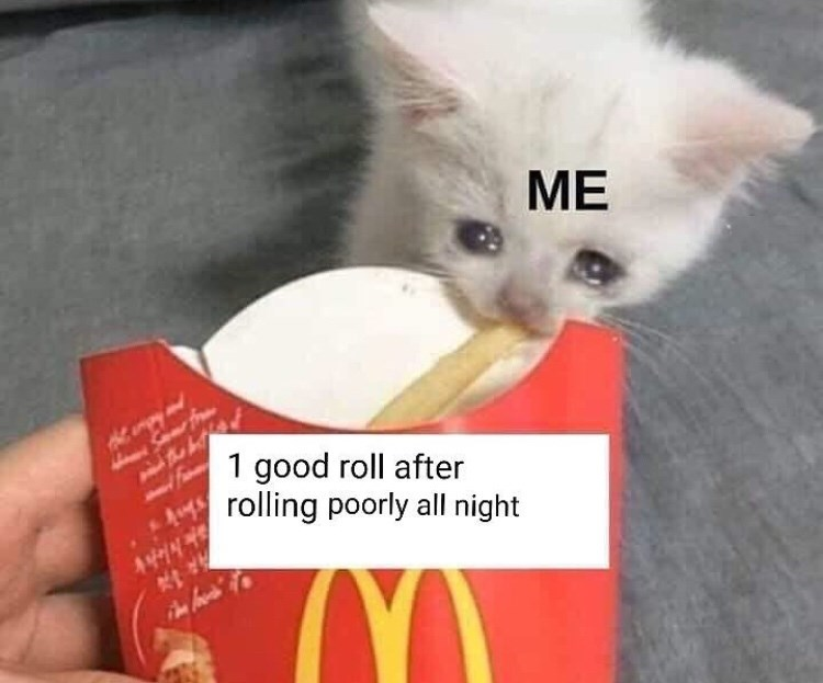 meme - Cat - ME 1 good roll after rolling poorly all night