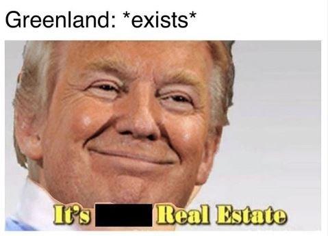 "Meme - ""Greenland: *exists;* Donald Trump: Real Estate"""