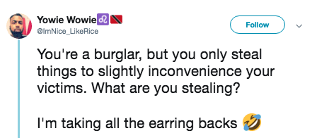 Text - Yowie Wowie Follow elmNice_LikeRice You're a burglar, but you only steal things to slightly inconvenience your victims. What are you stealing? I'm taking all the earring backs