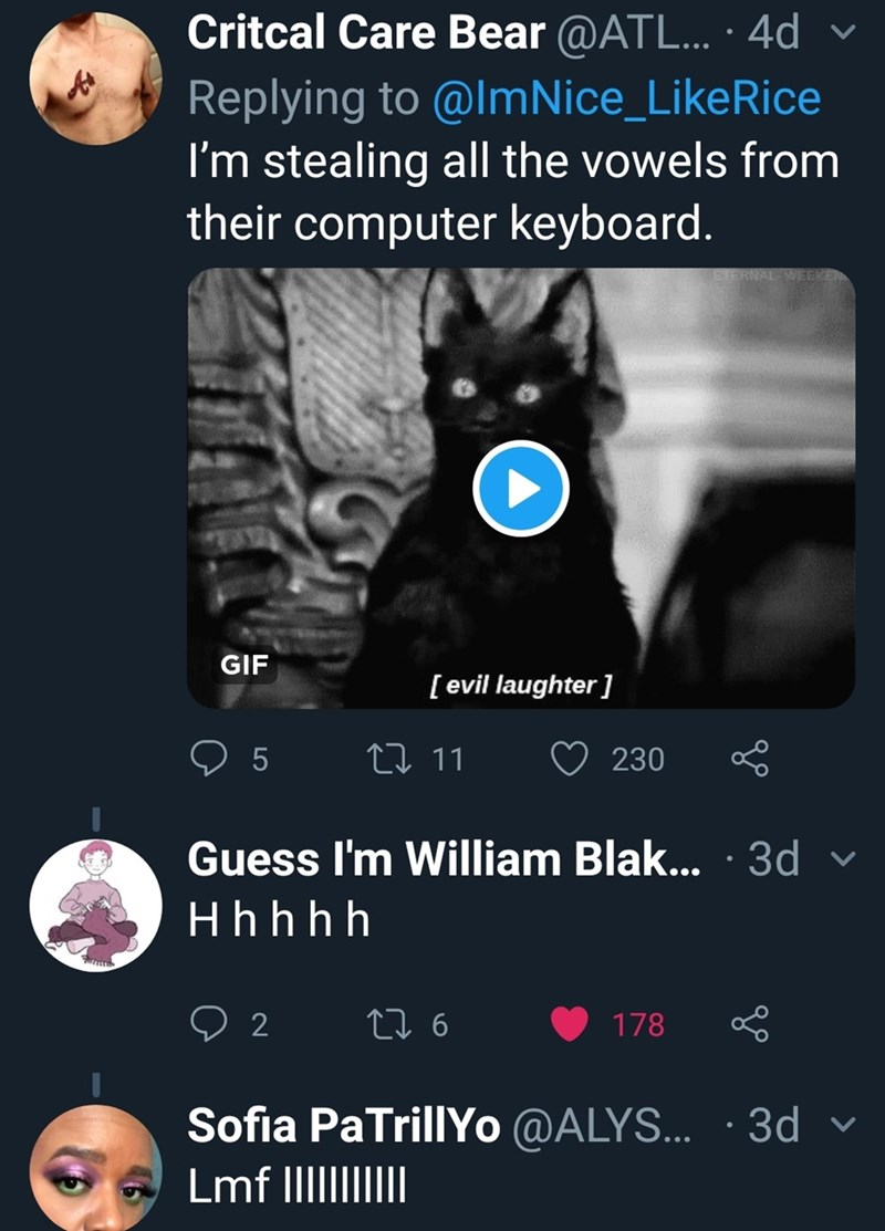 Text - Critcal Care Bear @ATL... 4d Replying to @ImNice_LikeRice I'm stealing all the vowels from their computer keyboard. V GIF [evil laughter ] 5 L 11 230 Guess I'm William Blak... 3d Hhh h h 2 6 178 Sofia PaTrillYo @ALYS... .3d Lmf IIII